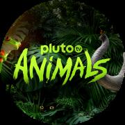 Pluto TV Animals